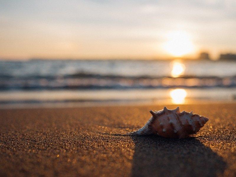 Czym się wyróżnia plaża w Świnoujściu?