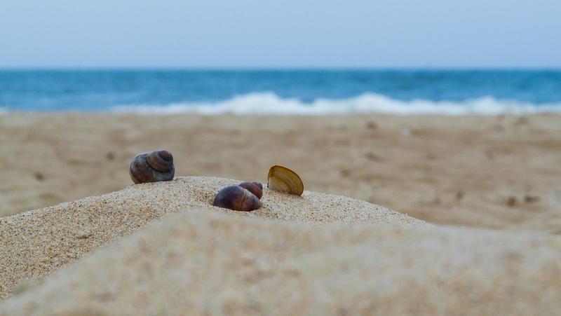 Wypoczynek nad Morzem Bałtyckim – spędź aktywne wakacje z dziećmi w ośrodku z basenem i wyżywieniem. Czy tani wypoczynek nad polskim morzem się opłaca?